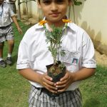Admissions in Greater noida west